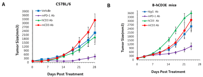 B-hCD3e-Mice-details-CD3-Abs-efficacy-evaluation